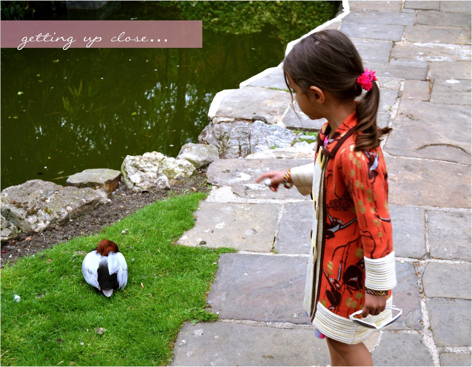 """kids enjoying wildlife ebabee"""