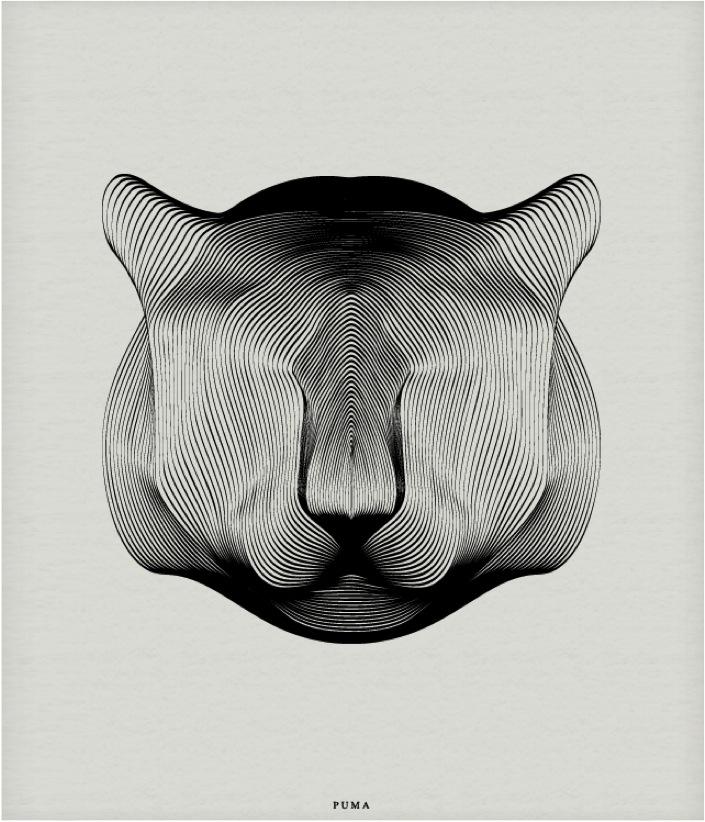 """black and white puma poster"""