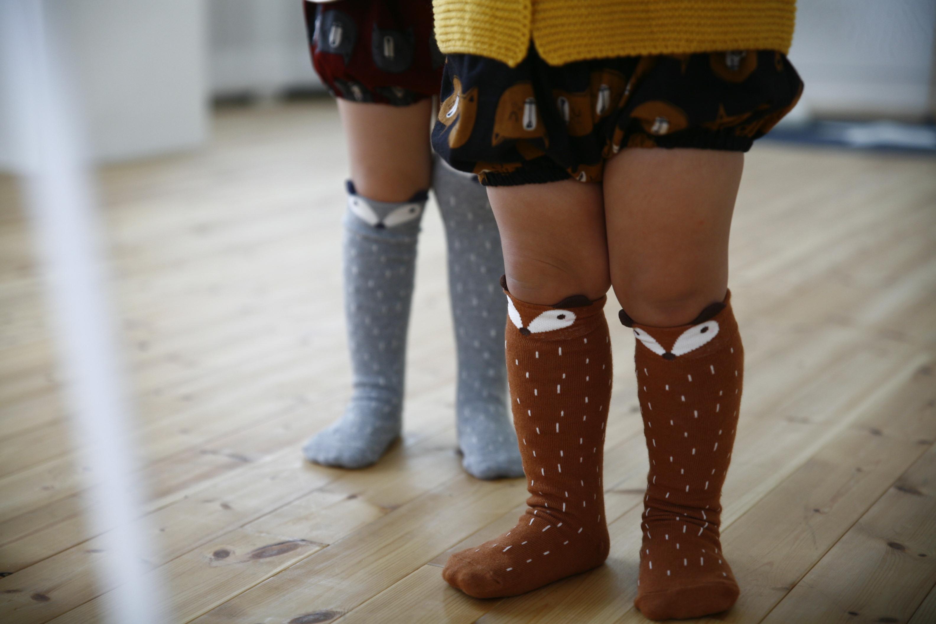 raccon knee socks ebabee
