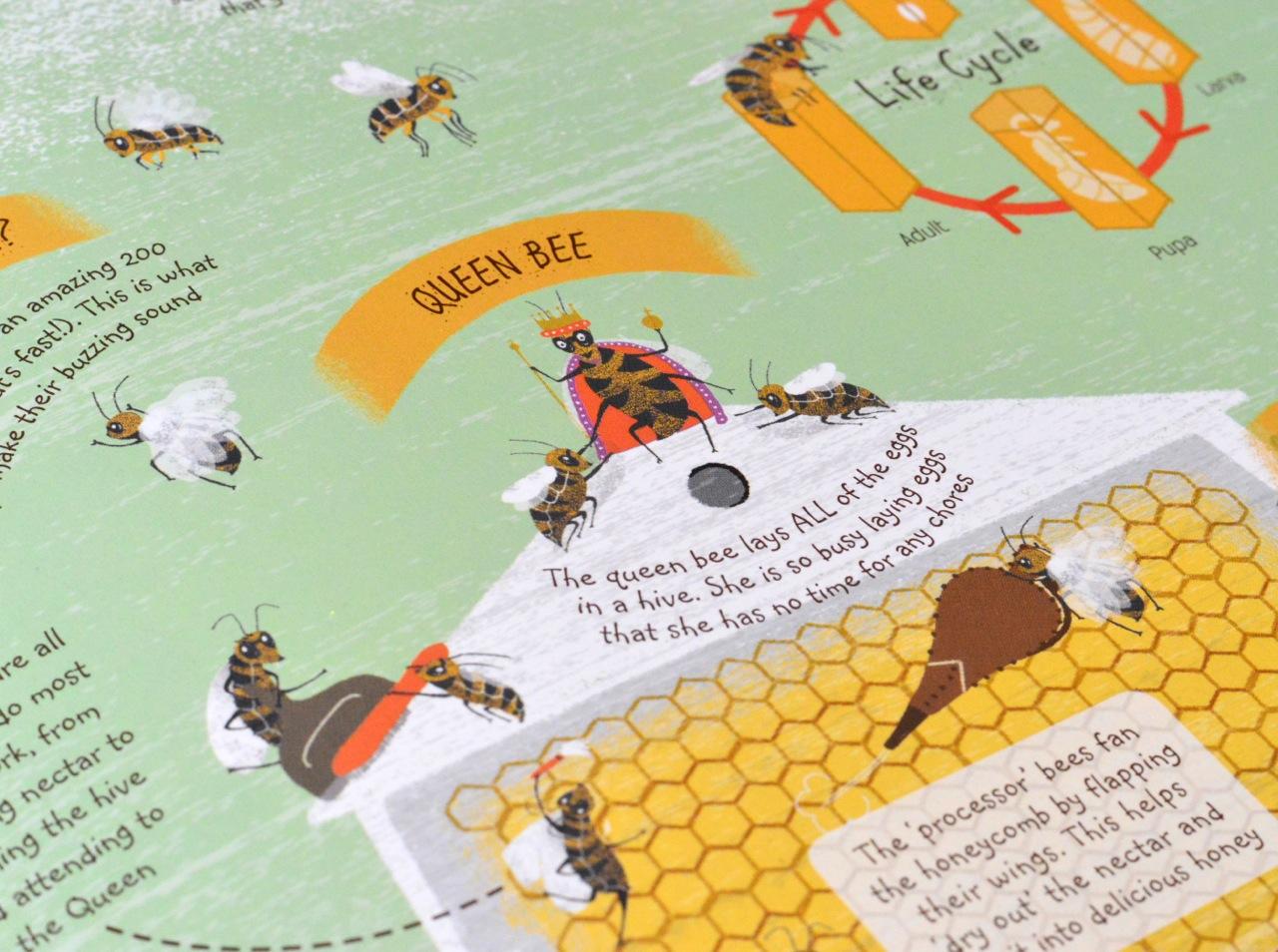 bug detective book