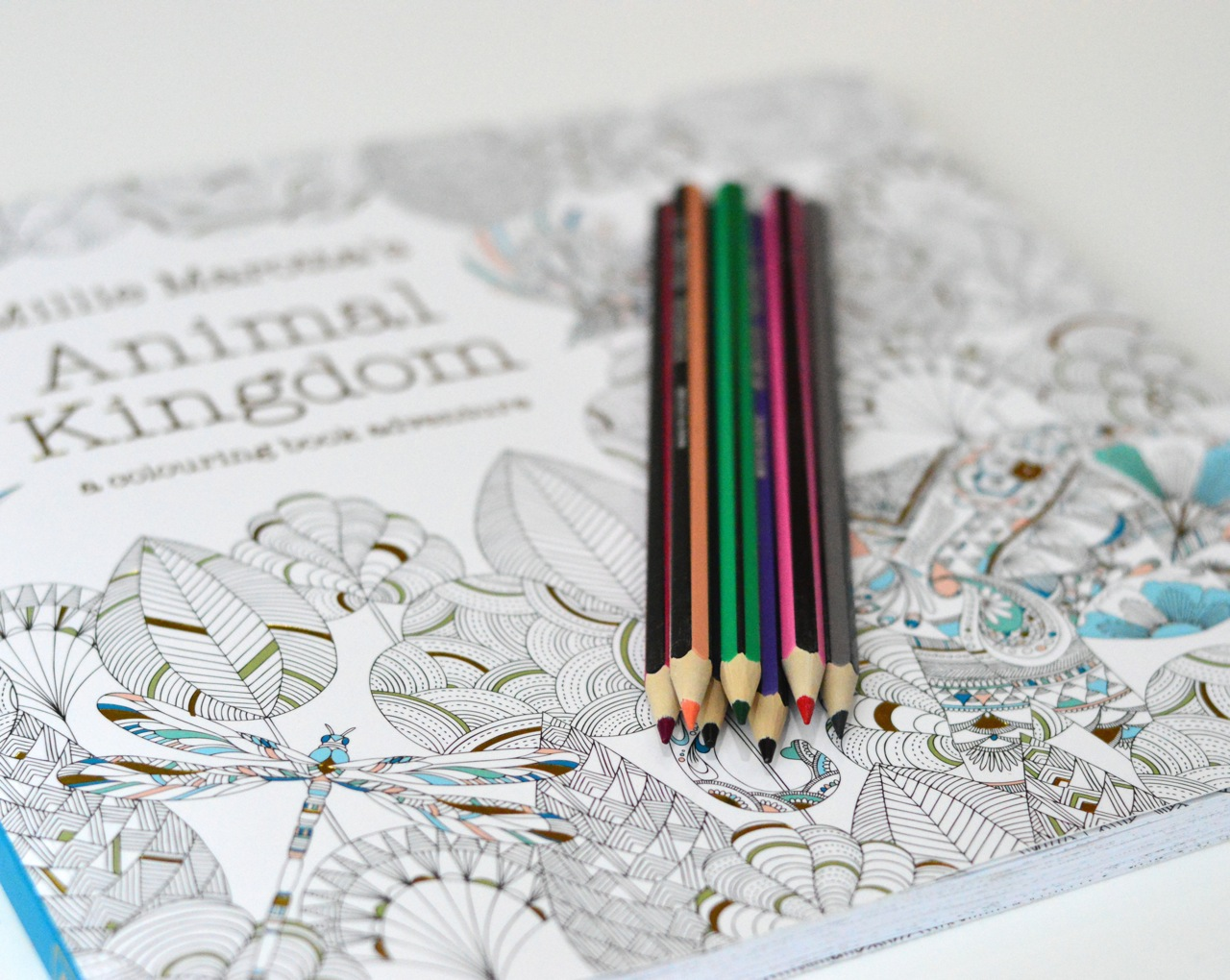 intricate colouring books for adults