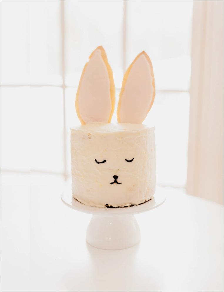 easy bunny cake idea